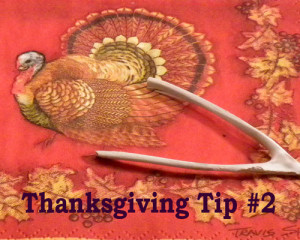 12Thanksgiving-tip-Two-500